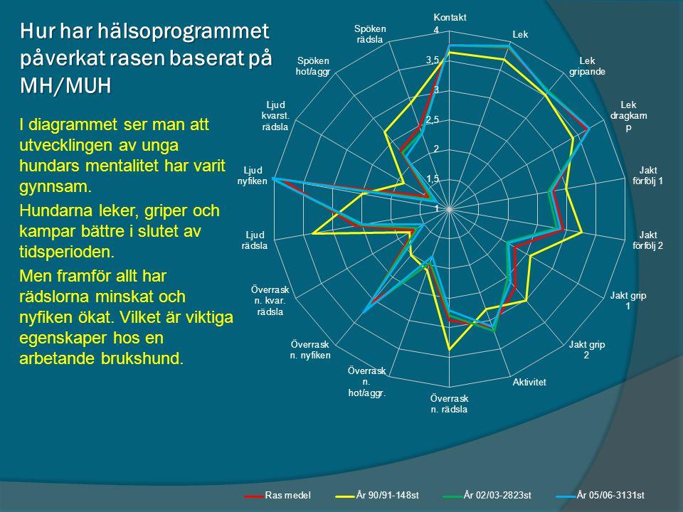 Hur har hälsoprogrammet påverkat rasen baserat på MH/MUH I diagrammet ser man att utvecklingen av unga hundars mentalitet har varit gynnsam. Hundarna