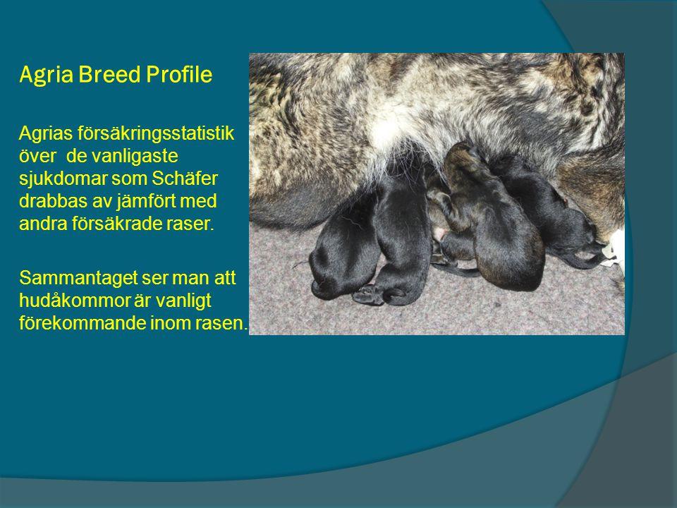 Agria Breed Profile Agrias försäkringsstatistik över de vanligaste sjukdomar som Schäfer drabbas av jämfört med andra försäkrade raser. Sammantaget se