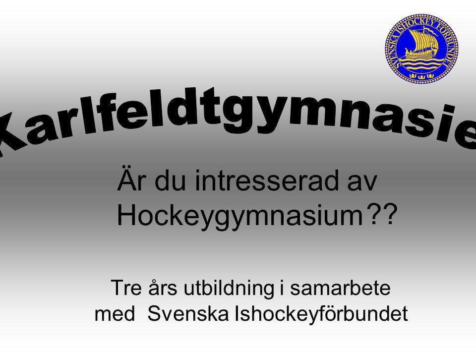 Tre års utbildning i samarbete med Svenska Ishockeyförbundet Är du intresserad av Hockeygymnasium ??