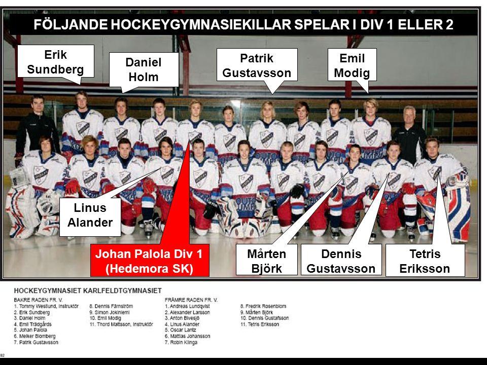 Tre års utbildning i samarbete med Svenska Ishockeyförbundet Erik Sundberg Patrik Gustavsson Tetris Eriksson Emil Modig FÖLJANDE HOCKEYGYMNASIEKILLAR