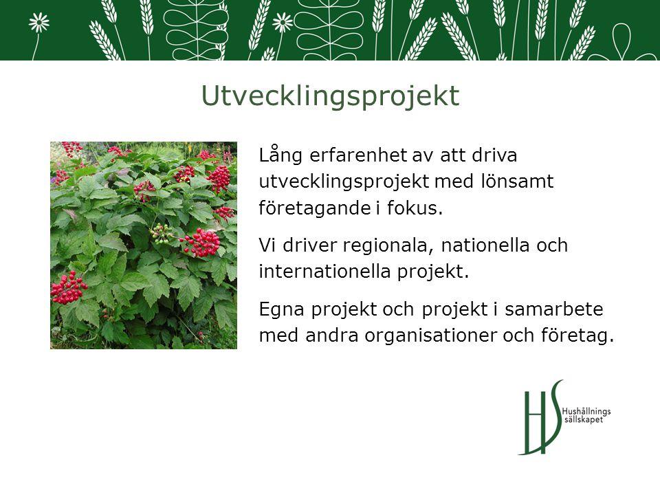 Utvecklingsprojekt Lång erfarenhet av att driva utvecklingsprojekt med lönsamt företagande i fokus.