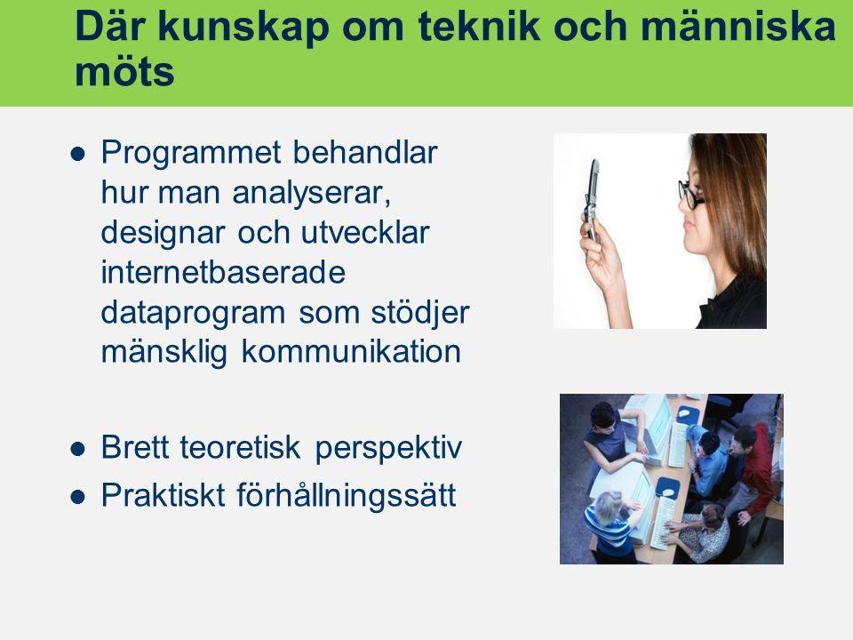 Där kunskap om teknik och människa möts Programmet behandlar hur man analyserar, designar och utvecklar internetbaserade dataprogram som stödjer mänsk
