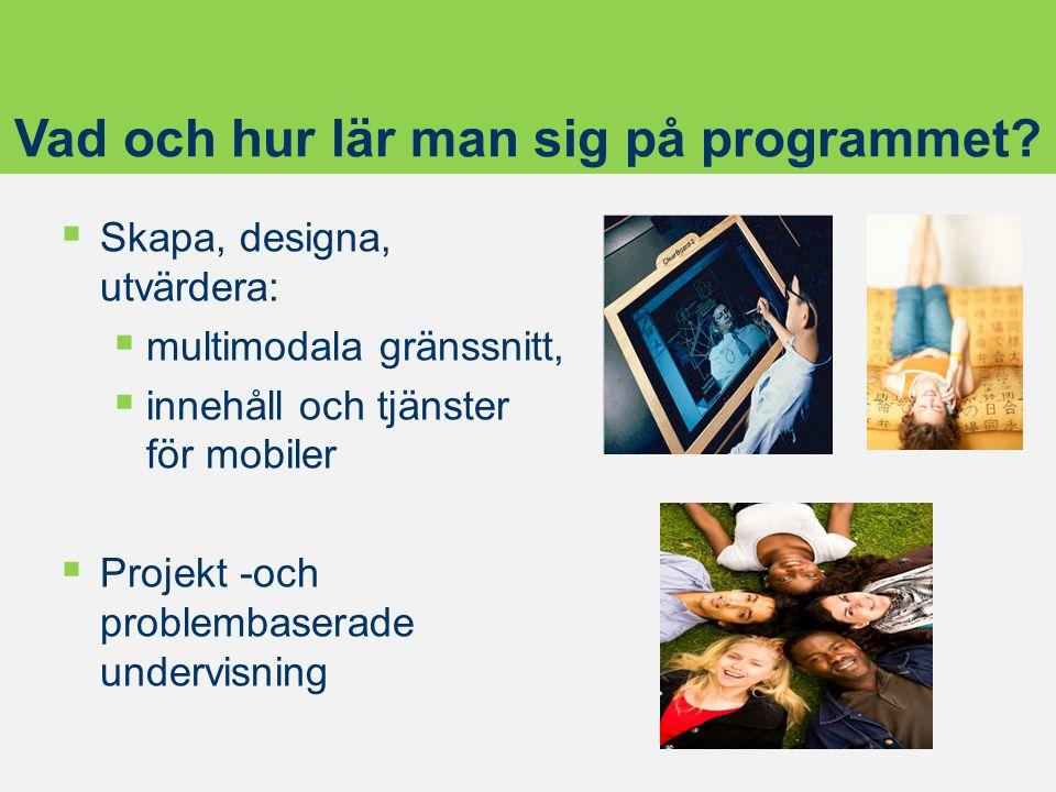  Skapa, designa, utvärdera:  multimodala gränssnitt,  innehåll och tjänster för mobiler  Projekt -och problembaserade undervisning Vad och hur lär