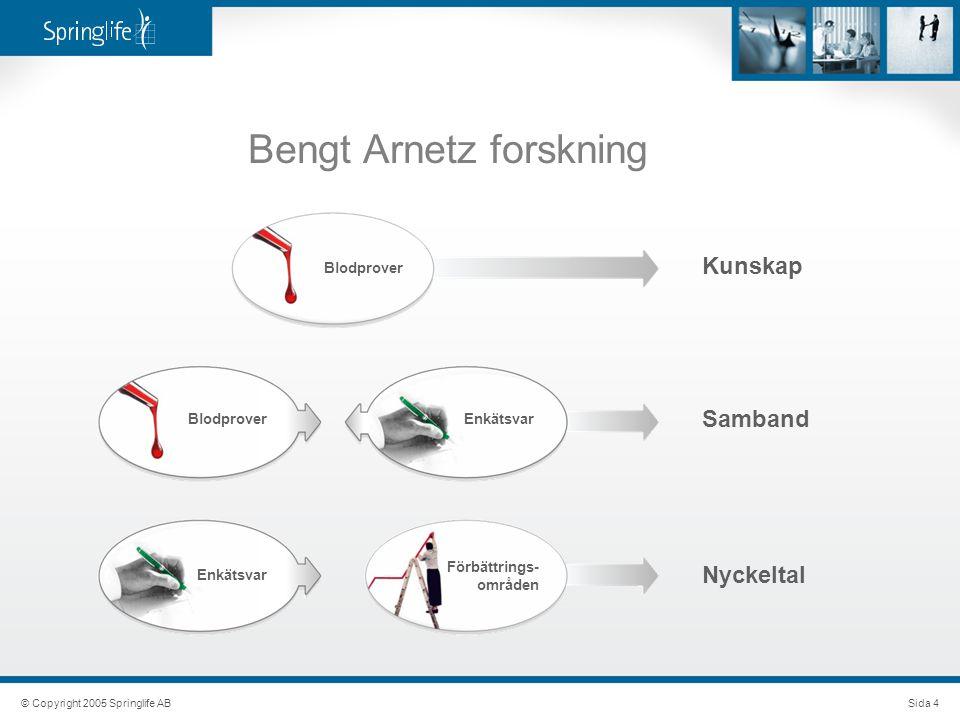 Bengt Arnetz forskning Kunskap © Copyright 2005 Springlife ABSida 4 Samband Nyckeltal Blodprover Enkätsvar Förbättrings- områden