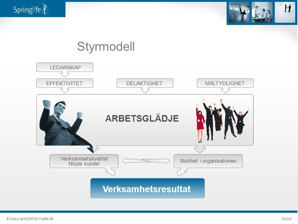 Styrmodell © Copyright 2005 Springlife ABSida 5 LEDARSKAP EFFEKTIVITETDELAKTIGHETMÅLTYDLIGHET ARBETSGLÄDJE Verksamhetskvalitet Nöjda kunder Stolthet i organisationen Verksamhetsresultat