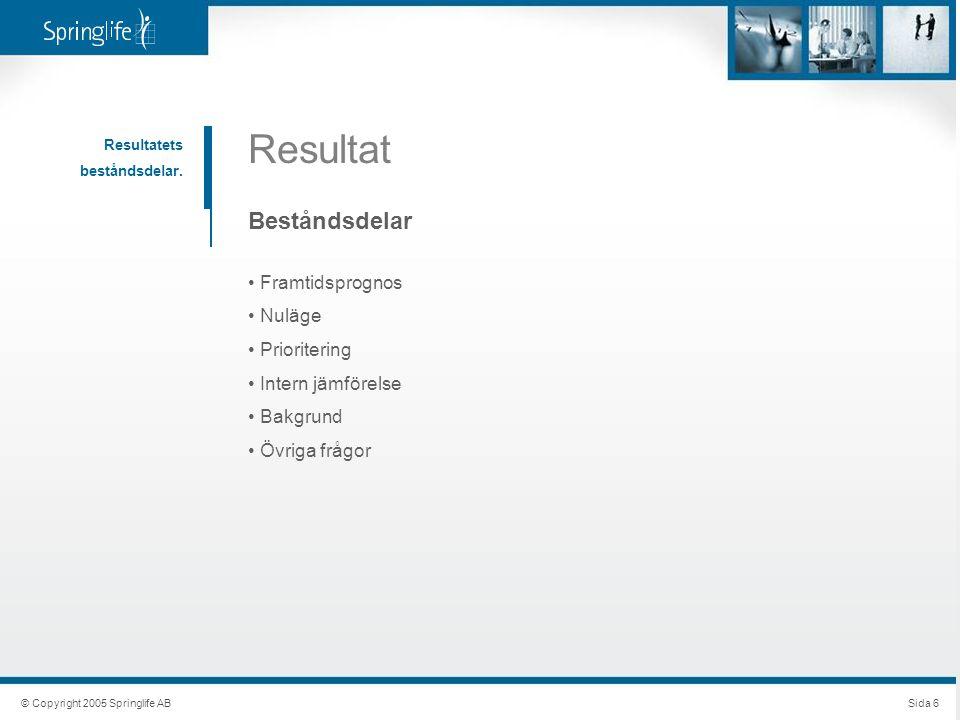 © Copyright 2005 Springlife ABSida 6 Resultat Resultatets beståndsdelar.
