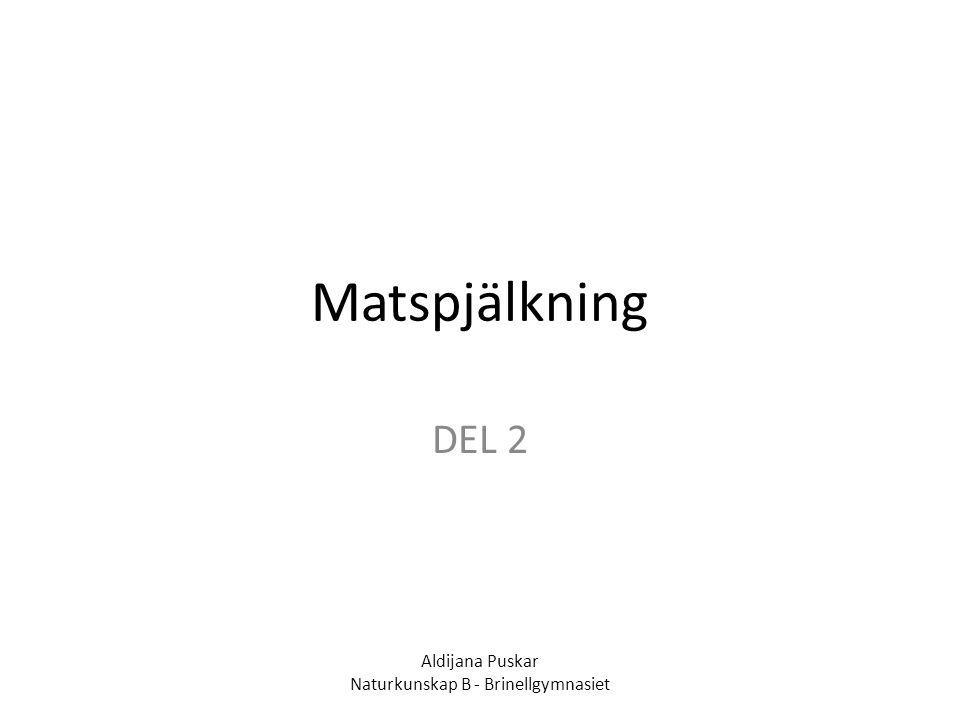 Matspjälkning DEL 2 Aldijana Puskar Naturkunskap B - Brinellgymnasiet