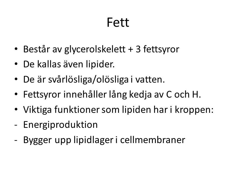 Fett Består av glycerolskelett + 3 fettsyror De kallas även lipider.