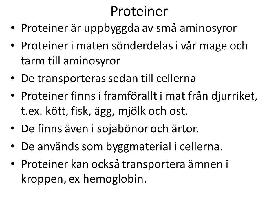 Proteiner Proteiner är uppbyggda av små aminosyror Proteiner i maten sönderdelas i vår mage och tarm till aminosyror De transporteras sedan till cellerna Proteiner finns i framförallt i mat från djurriket, t.ex.