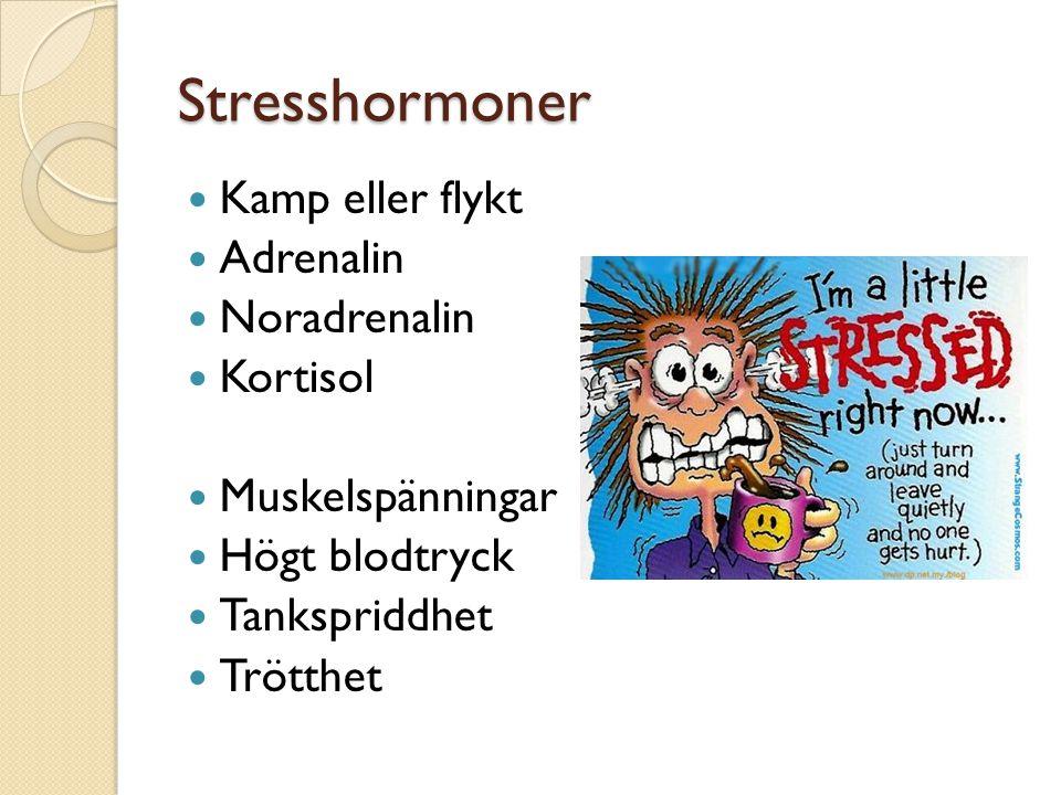 Stresshormoner Kamp eller flykt Adrenalin Noradrenalin Kortisol Muskelspänningar Högt blodtryck Tankspriddhet Trötthet