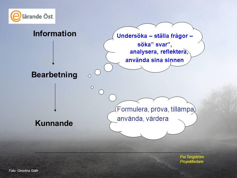 """Information Bearbetning Kunnande Formulera, pröva, tillämpa, använda, värdera Undersöka – ställa frågor – söka"""" svar"""", analysera, reflektera, använda"""