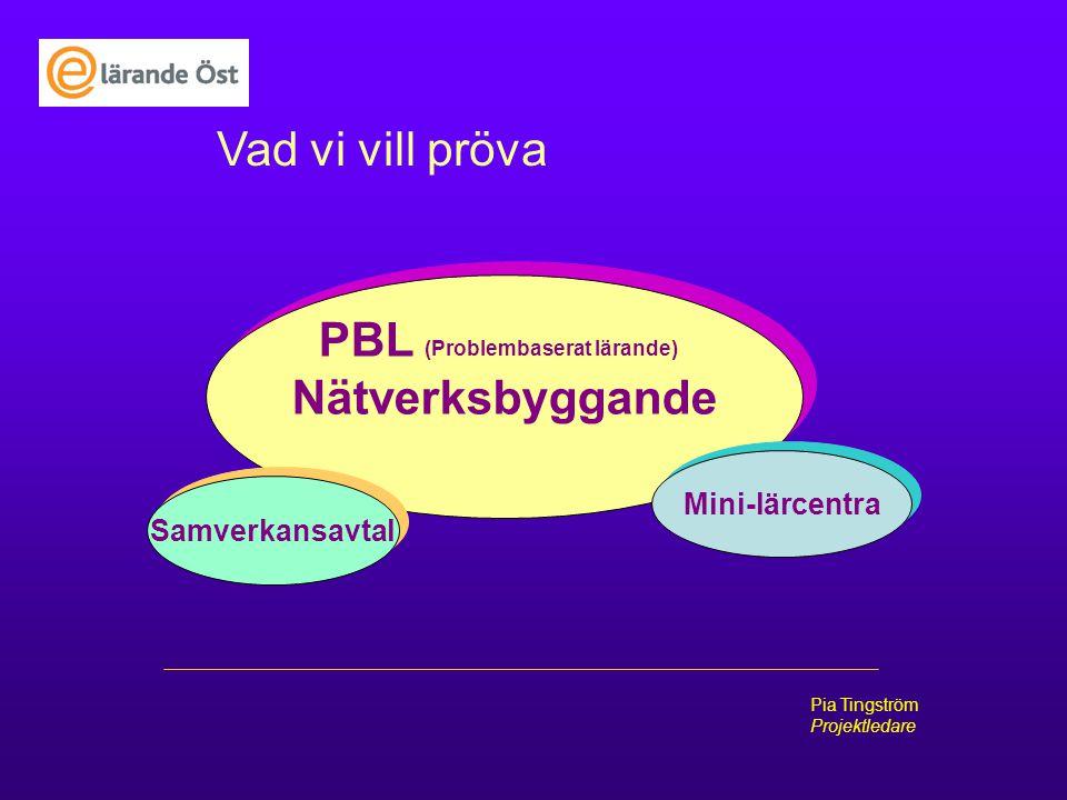 E-lärade Öst Pia Tingström Projektledare Vad vi vill pröva PBL (Problembaserat lärande) Nätverksbyggande PBL (Problembaserat lärande) Nätverksbyggande