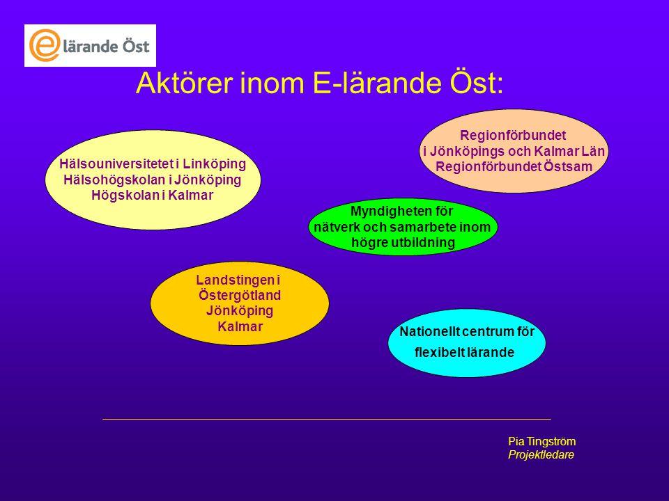 Pia Tingström Projektledare Aktörer inom E-lärande Öst: Hälsouniversitetet i Linköping Hälsohögskolan i Jönköping Högskolan i Kalmar Landstingen i Öst