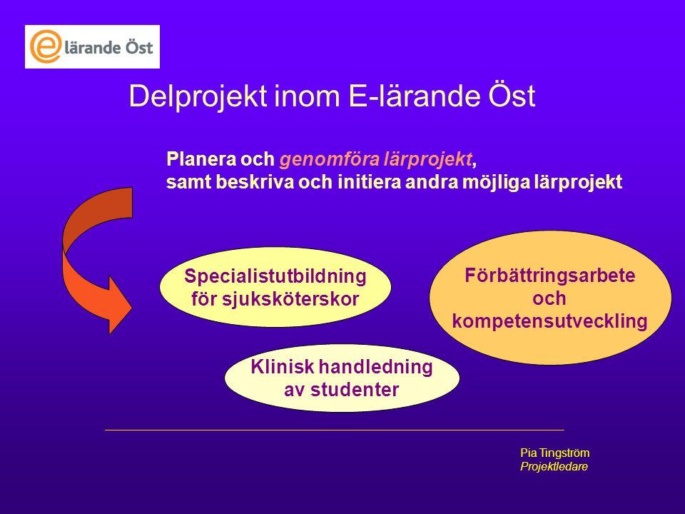 Pia Tingström Projektledare Delprojekt inom E-lärande Öst Planera och genomföra lärprojekt, samt beskriva och initiera andra möjliga lärprojekt Specia