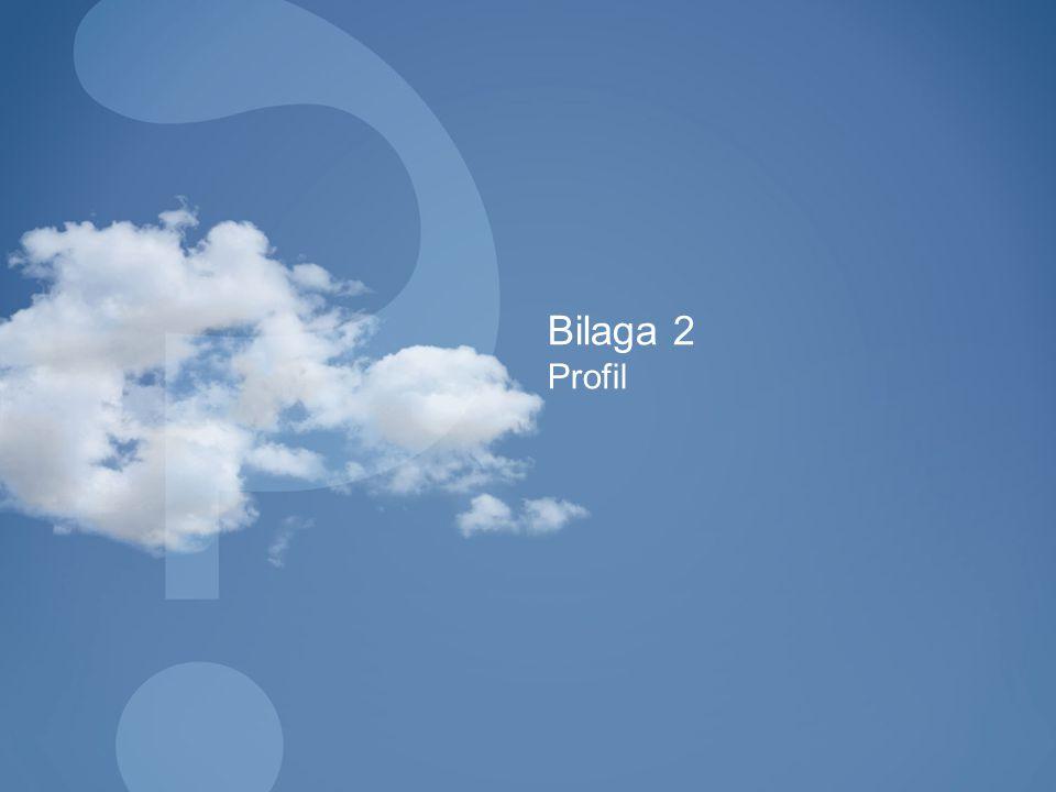 Bilaga 2 Profil