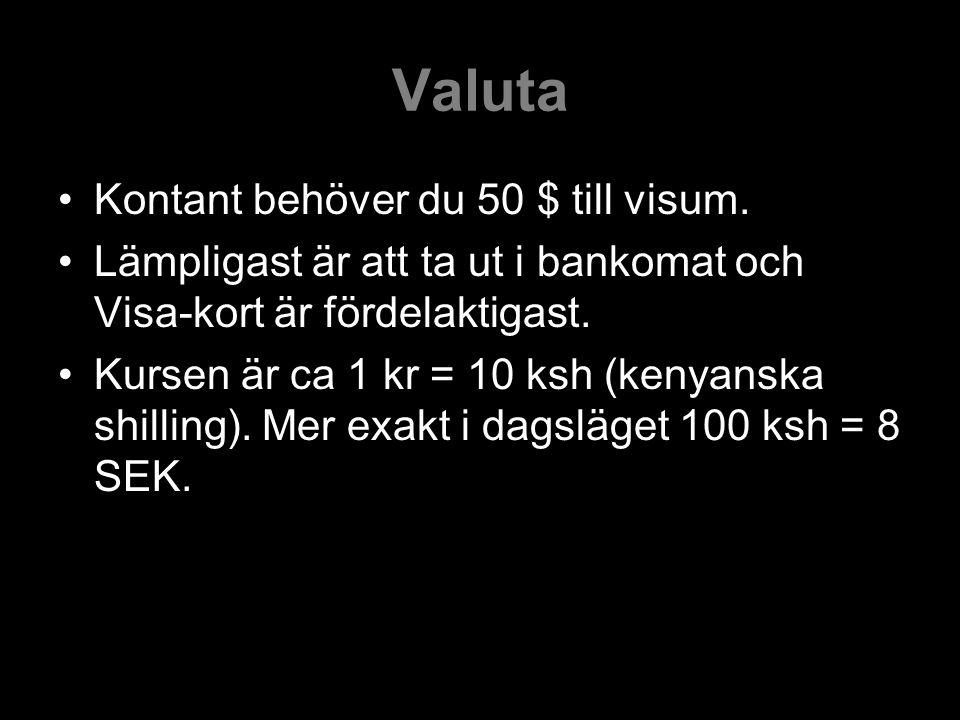 Valuta Kontant behöver du 50 $ till visum.
