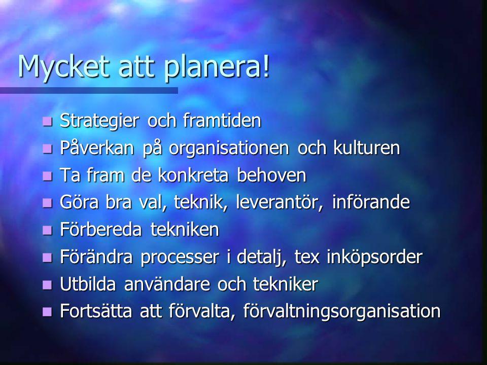 Mycket att planera! Strategier och framtiden Strategier och framtiden Påverkan på organisationen och kulturen Påverkan på organisationen och kulturen