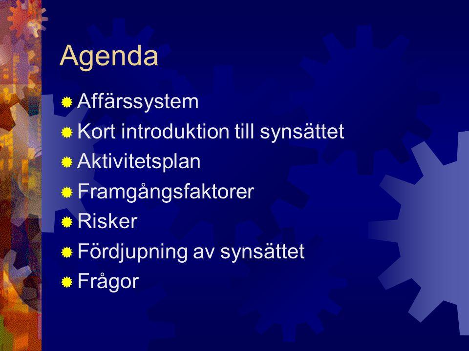 Agenda  Affärssystem  Kort introduktion till synsättet  Aktivitetsplan  Framgångsfaktorer  Risker  Fördjupning av synsättet  Frågor