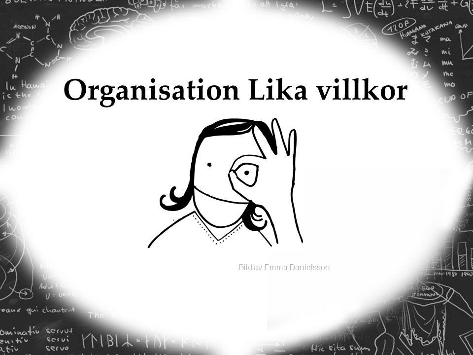 Bild av Emma Danielsson Organisation Lika villkor