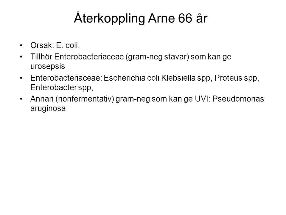 Återkoppling Arne 66 år Orsak: E. coli. Tillhör Enterobacteriaceae (gram-neg stavar) som kan ge urosepsis Enterobacteriaceae: Escherichia coli Klebsie