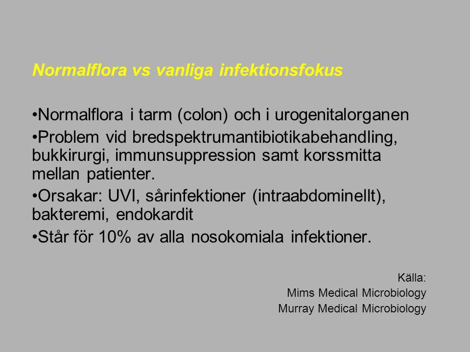 Normalflora vs vanliga infektionsfokus Normalflora i tarm (colon) och i urogenitalorganen Problem vid bredspektrumantibiotikabehandling, bukkirurgi, i
