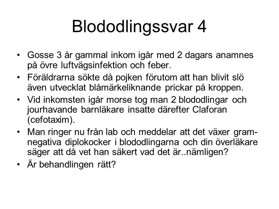 Blododlingssvar 4 Gosse 3 år gammal inkom igår med 2 dagars anamnes på övre luftvägsinfektion och feber. Föräldrarna sökte då pojken förutom att han b