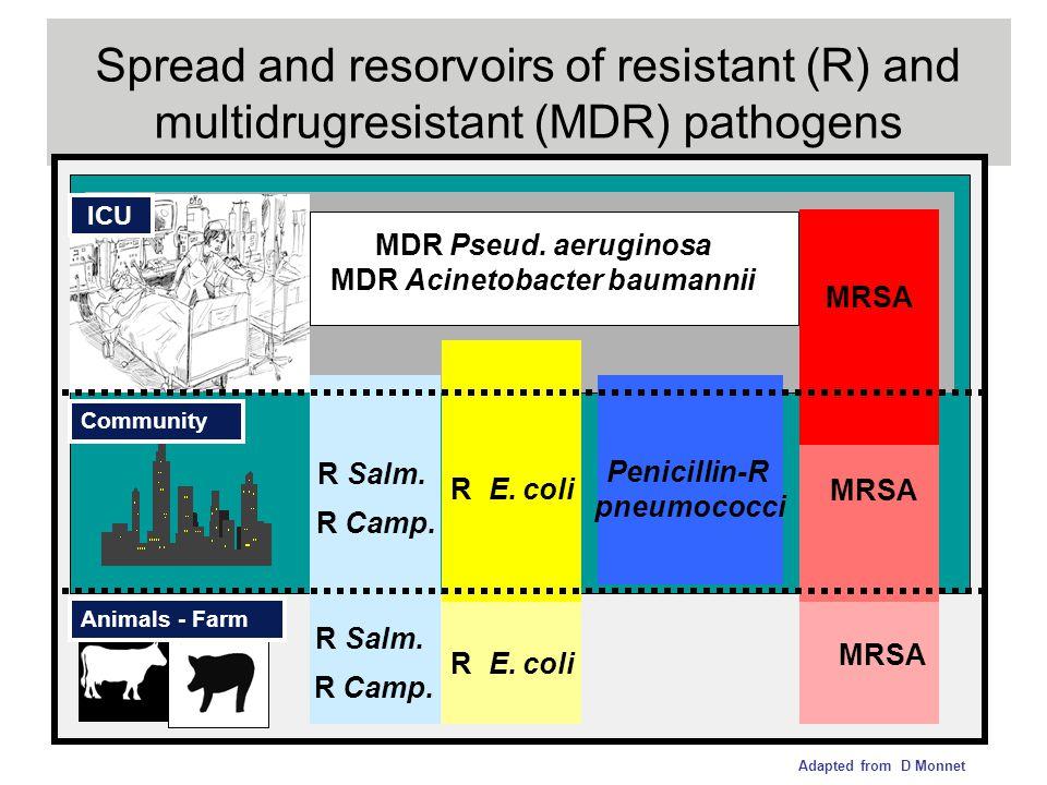 Spread and resorvoirs of resistant (R) and multidrugresistant (MDR) pathogens Penicillin-R pneumococci MDR Pseud. aeruginosa MDR Acinetobacter baumann