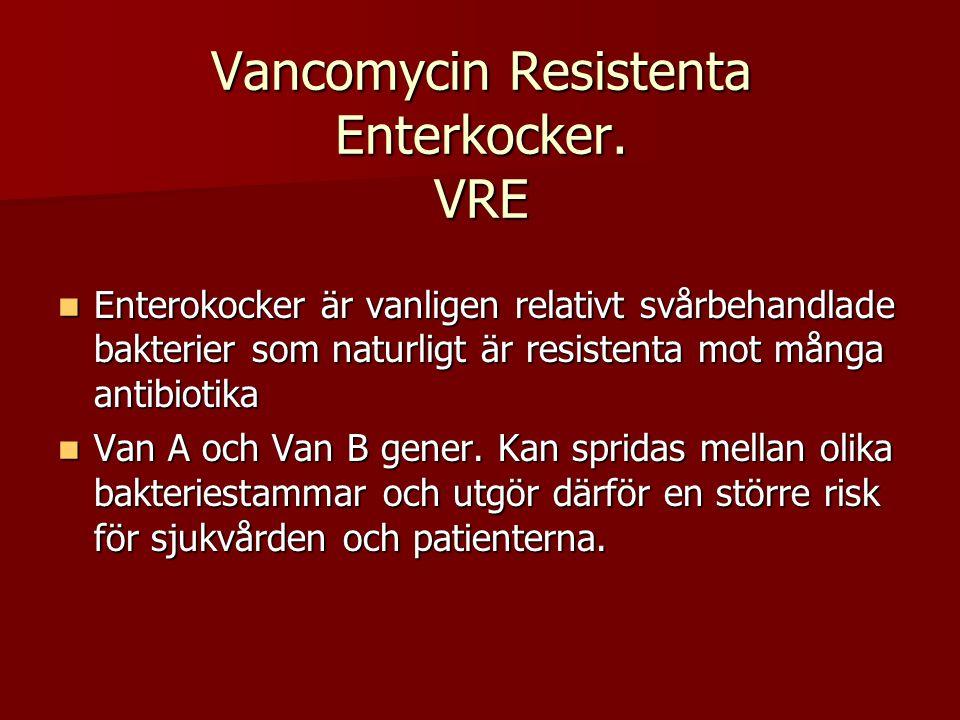 Vancomycin Resistenta Enterkocker. VRE Enterokocker är vanligen relativt svårbehandlade bakterier som naturligt är resistenta mot många antibiotika En