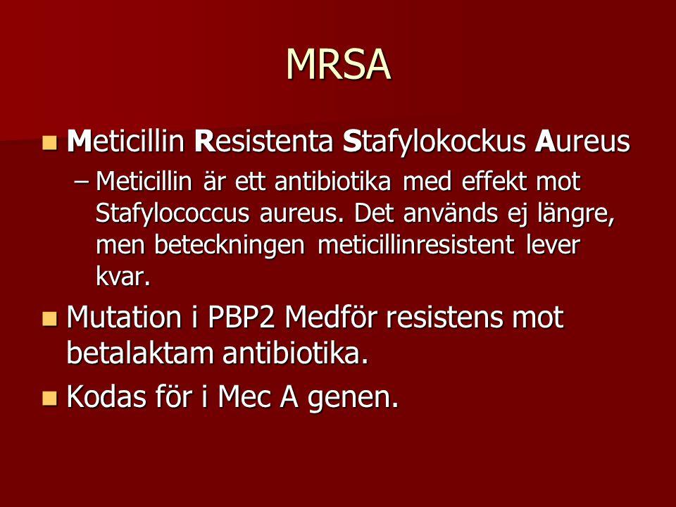 MRSA Meticillin Resistenta Stafylokockus Aureus Meticillin Resistenta Stafylokockus Aureus –Meticillin är ett antibiotika med effekt mot Stafylococcus