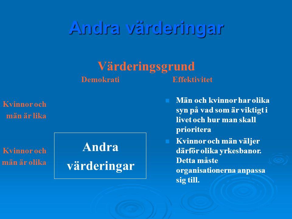 Andra värderingar DemokratiEffektivitet Värderingsgrund Kvinnor och män är lika Kvinnor och män är olika Andra värderingar n Män och kvinnor har olika
