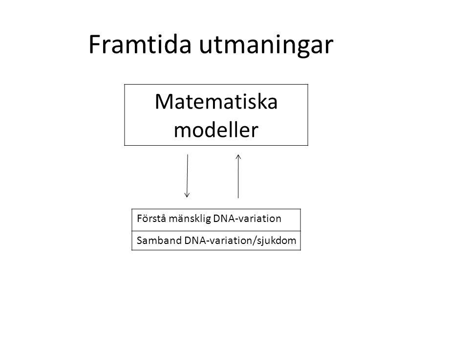 Framtida utmaningar Matematiska modeller Förstå mänsklig DNA-variation Samband DNA-variation/sjukdom