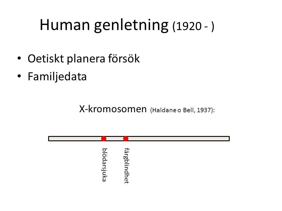 Human genletning (1920 - ) Oetiskt planera försök Familjedata X-kromosomen (Haldane o Bell, 1937): blödarsjukafärgblindhet