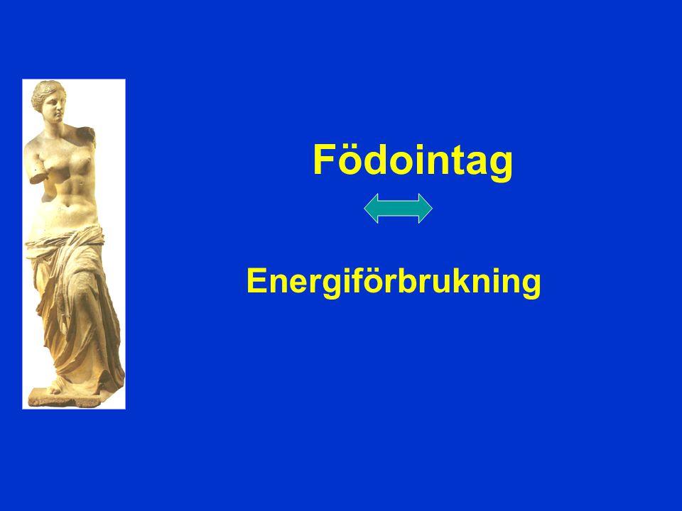 Födointag Energiförbrukning