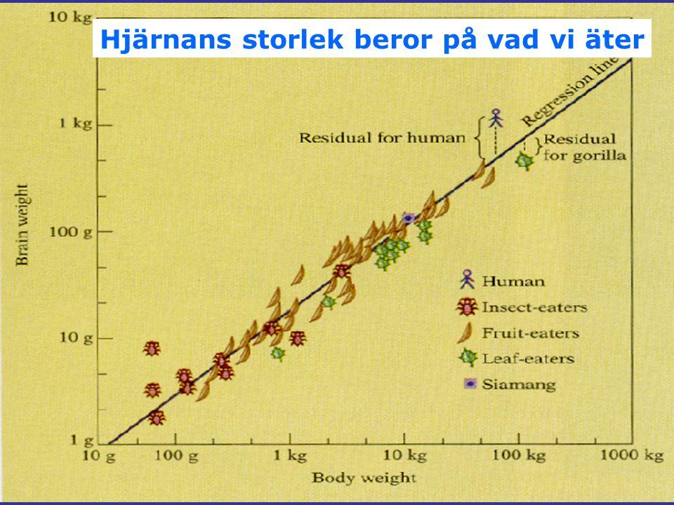 Kostnader för obesitas Andreyeva et al, 2004