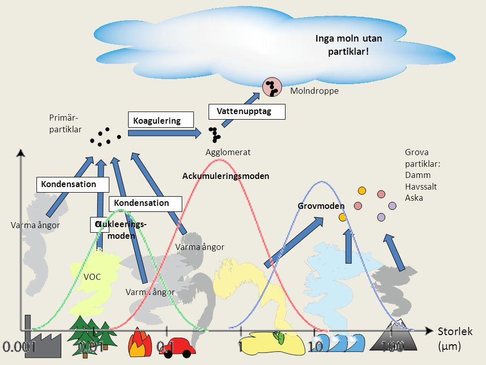 Varma ångor VOC Kondensation Koagulering Vattenupptag Grova partiklar: Damm Havssalt Aska O3O3 Primär- partiklar Agglomerat Molndroppe Nukleerings- mo