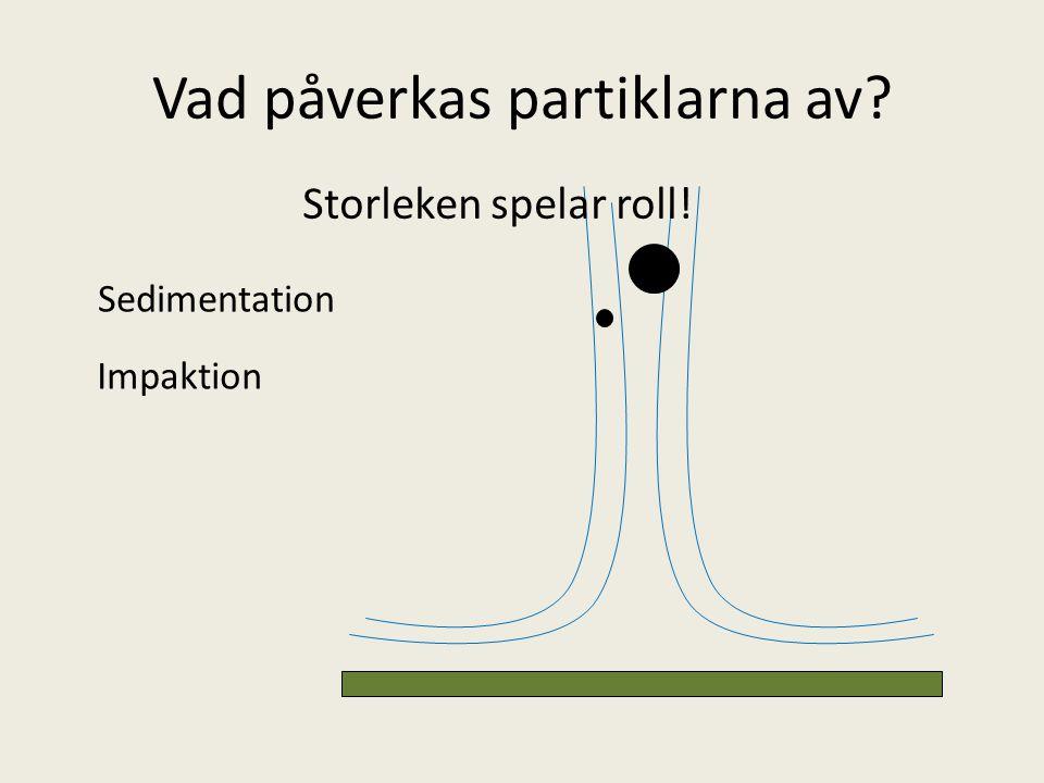 Vad påverkas partiklarna av? Storleken spelar roll! Sedimentation Impaktion