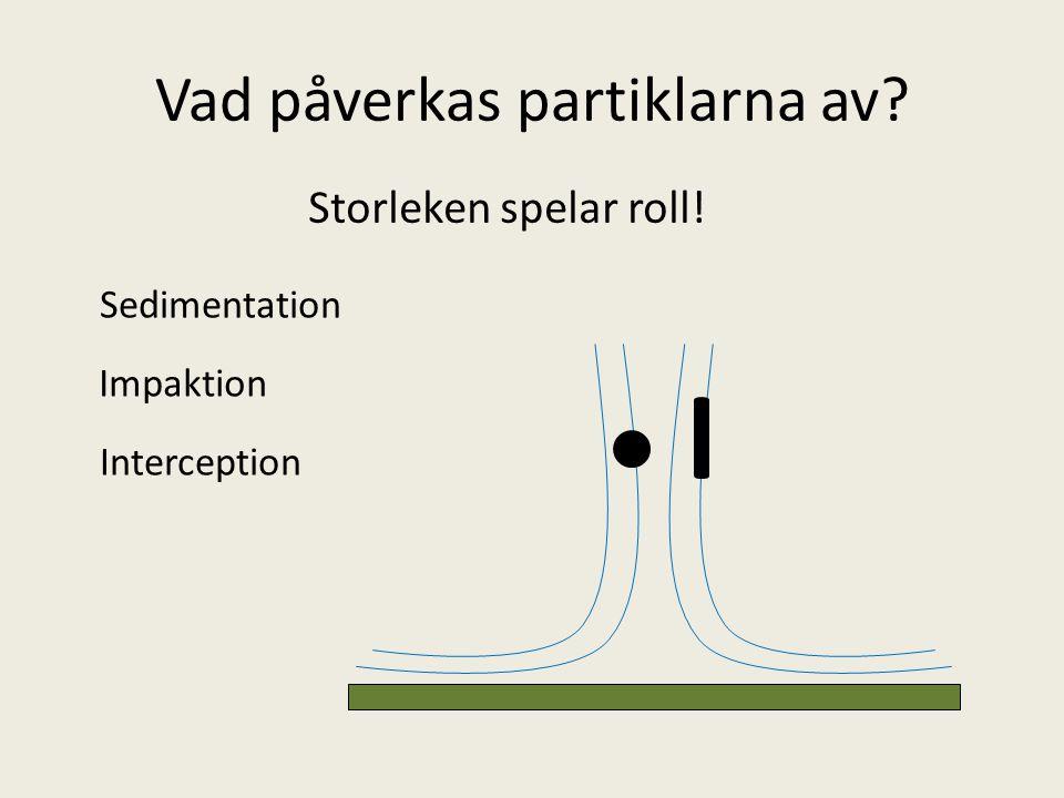 Vad påverkas partiklarna av? Storleken spelar roll! Sedimentation Impaktion Interception