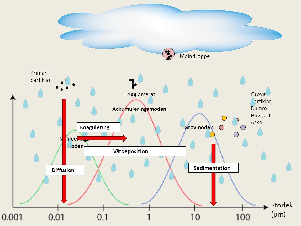 Molndroppe Primär- partiklar Ackumuleringsmoden Grovmoden Nukleerings- moden AgglomeratGrova partiklar: Damm Havssalt Aska Diffusion Sedimentation Våt