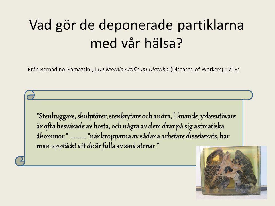 Vad gör de deponerade partiklarna med vår hälsa? Från Bernadino Ramazzini, i De Morbis Artificum Diatriba (Diseases of Workers) 1713:
