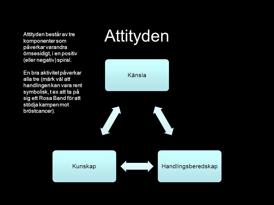 Attityden KänslaHandlingsberedskapKunskap Attityden består av tre komponenter som påverkar varandra ömsesidigt, i en positiv (eller negativ) spiral.