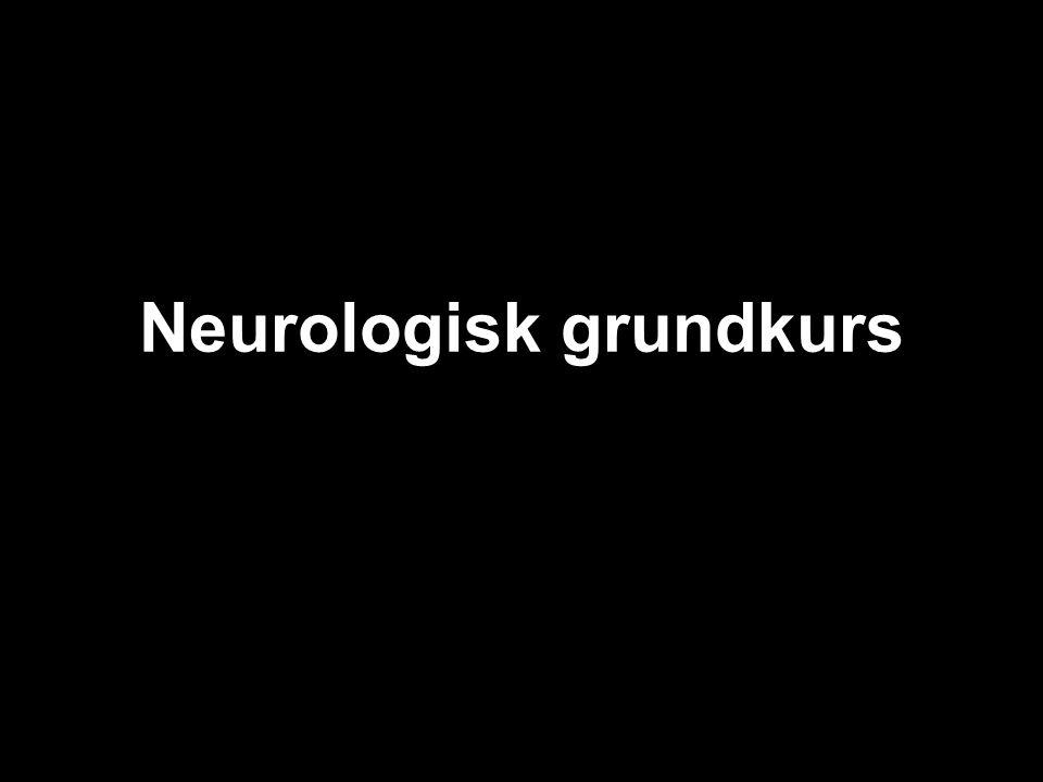 Neurologisk grundkurs
