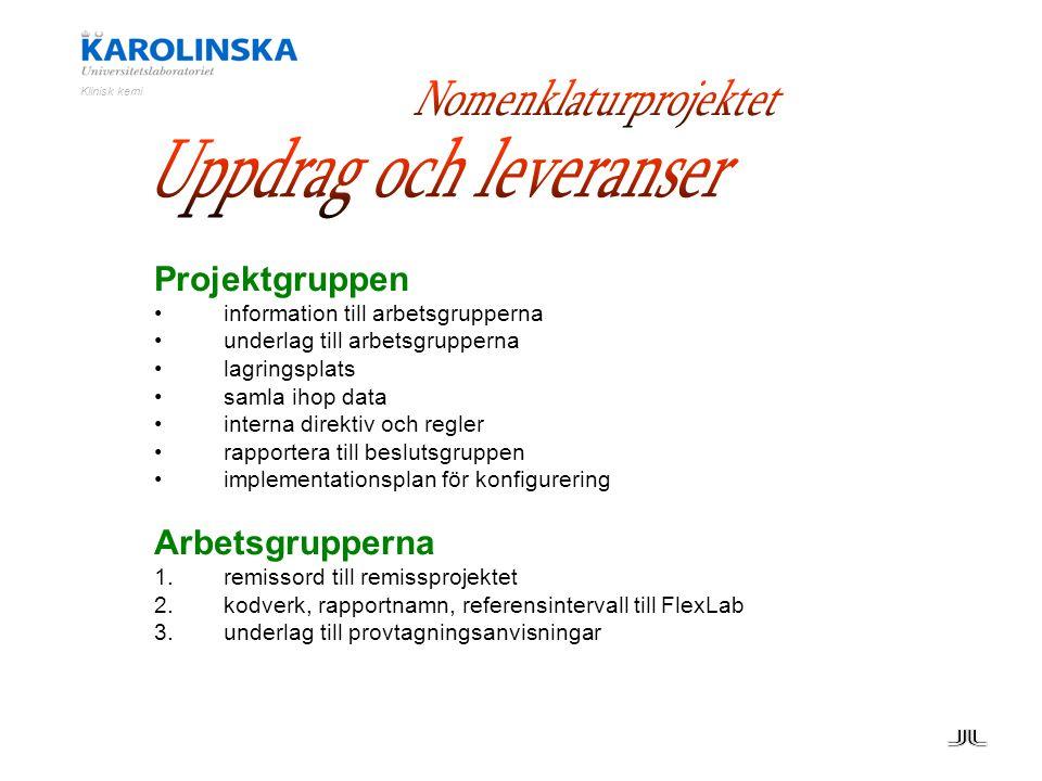 Projektgruppen information till arbetsgrupperna underlag till arbetsgrupperna lagringsplats samla ihop data interna direktiv och regler rapportera til