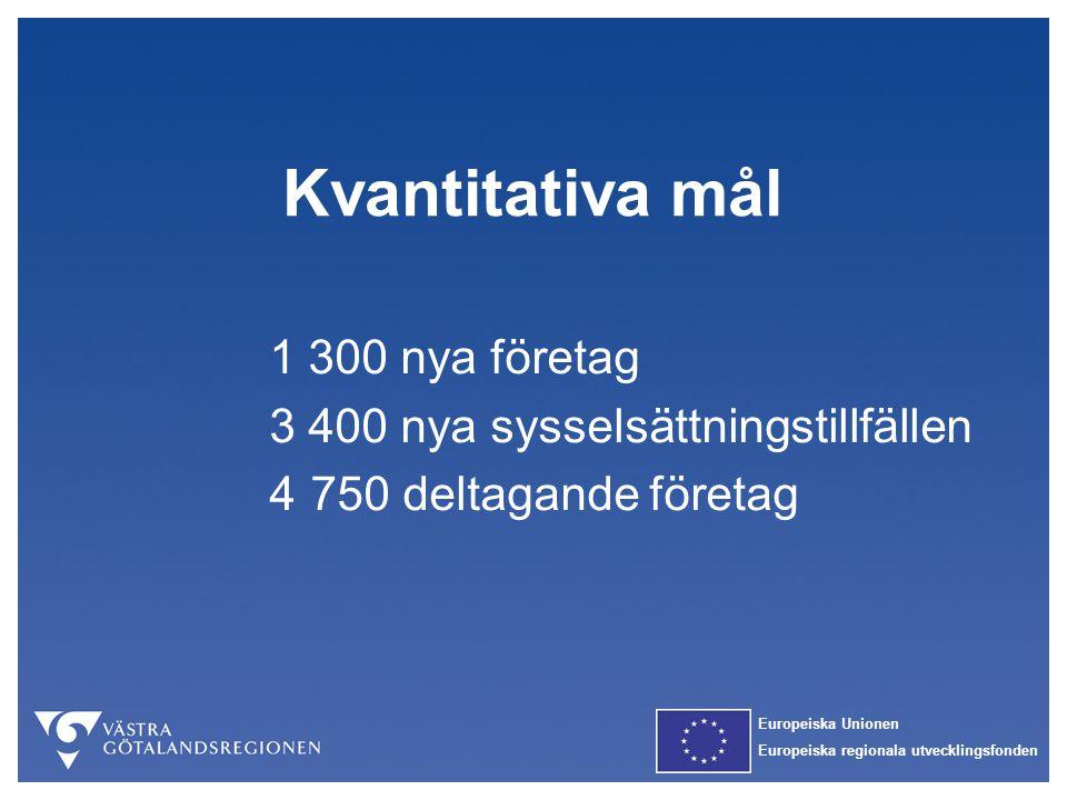 Europeiska Unionen Europeiska regionala utvecklingsfonden Kvantitativa mål 1 300 nya företag 3 400 nya sysselsättningstillfällen 4750 deltagande föret