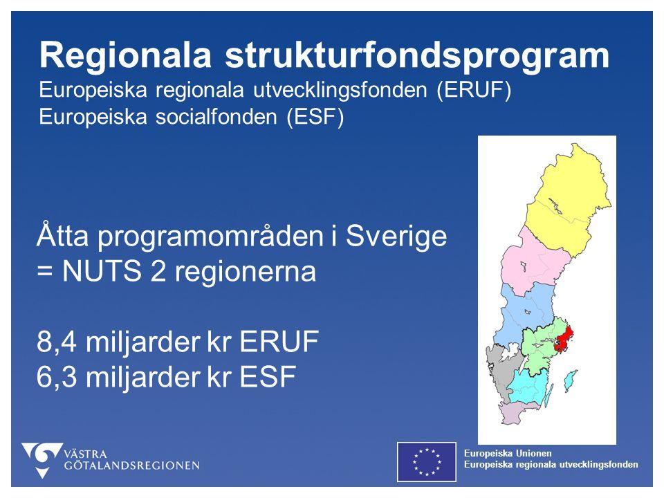Europeiska Unionen Europeiska regionala utvecklingsfonden Europeiska Unionen Europeiska regionala utvecklingsfonden Regionalt program Europeiska Regionala Utvecklingsfonden Regional plan Europeiska Socialfonden Ökat arbetskrafts- utbud Samverkansinitiativ & innovativa miljöer Hållbar stadsutveckling Entreprenörskap & innovativt företagande Kompetens- försörjning Ökat Arbetskraftsutbud Ett Nationellt program Europeiska Socialfonden InsatsområdenProgramområden Mål 2 Västsverige 2007-2013 SFP Kompetens- försörjning