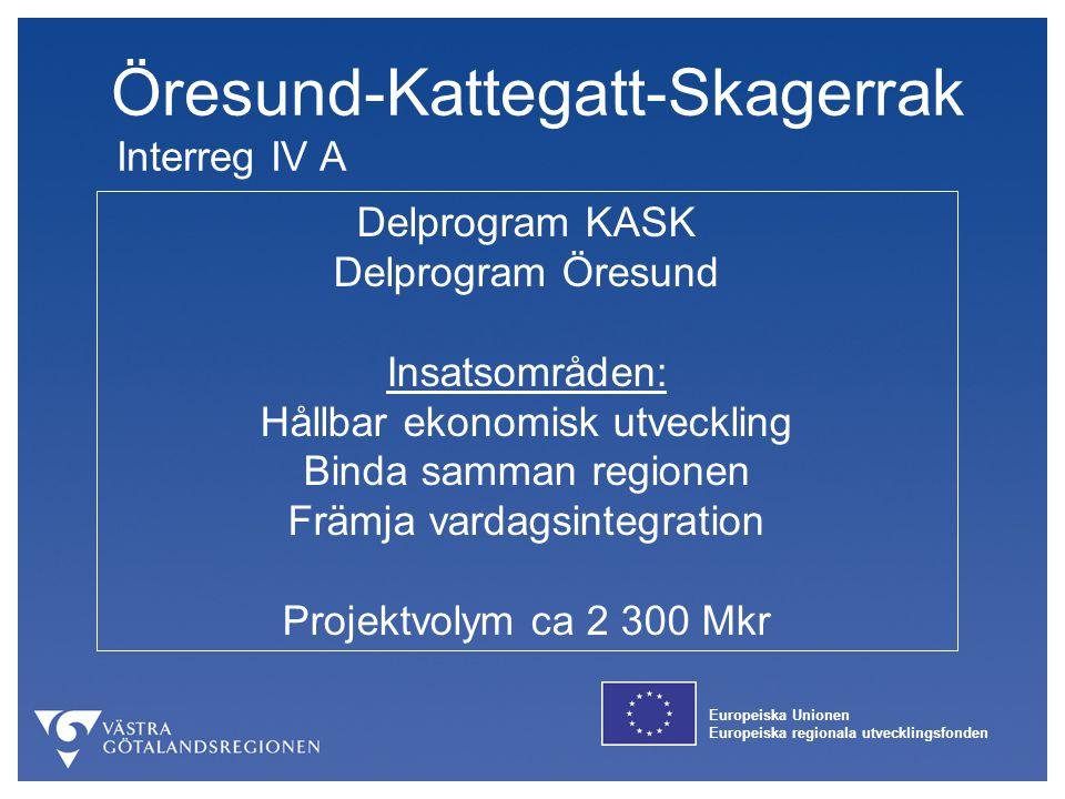 Europeiska Unionen Europeiska regionala utvecklingsfonden Sverige - Norge Interreg IV A Ett program med tre del-sekretariat Insatsområden: Ekonomisk tillväxt Attraktiv livsmiljö Projektvolym ca 610 Mkr + norsk finansiering ca 470 Mkr