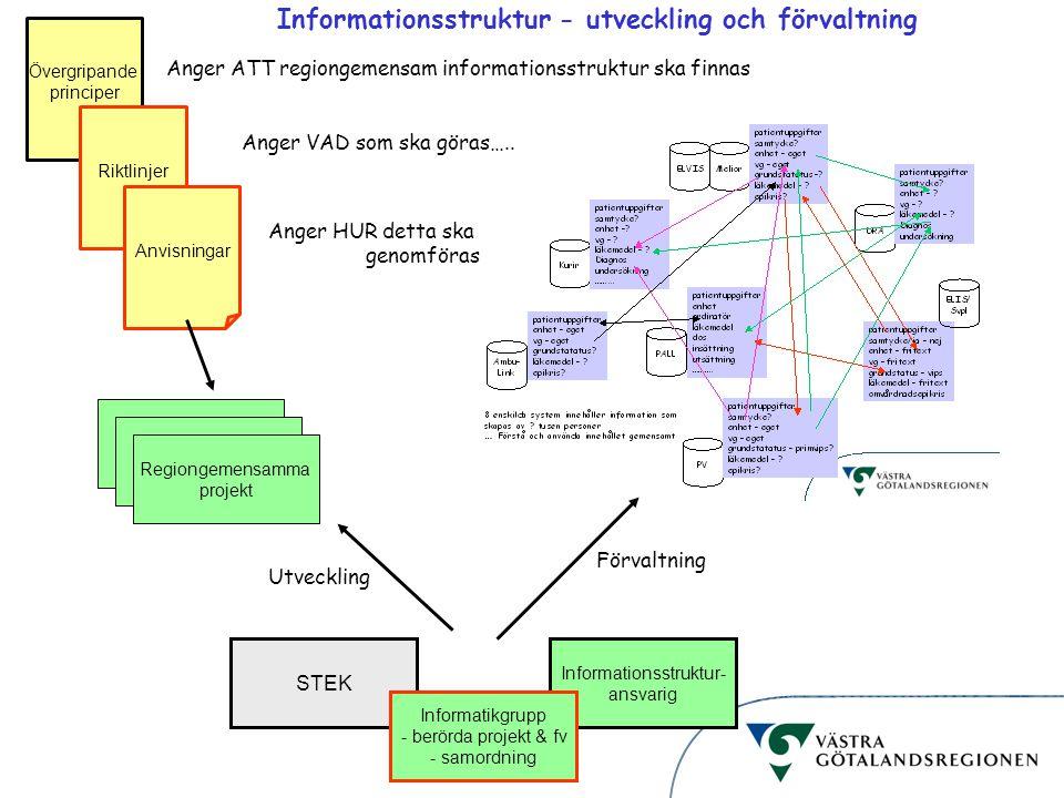 Informationsstruktur Övergripande principer Anger ATT regiongemensam informationsstruktur ska finnas Riktlinjer Anger VAD som ska göras….. Anvisningar
