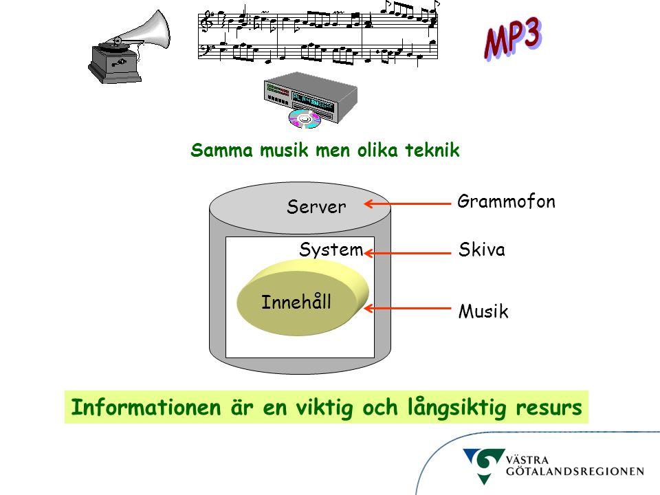 Informationsstruktur Server Samma musik men olika teknik System Innehåll Grammofon Skiva Musik Informationen är en viktig och långsiktig resurs