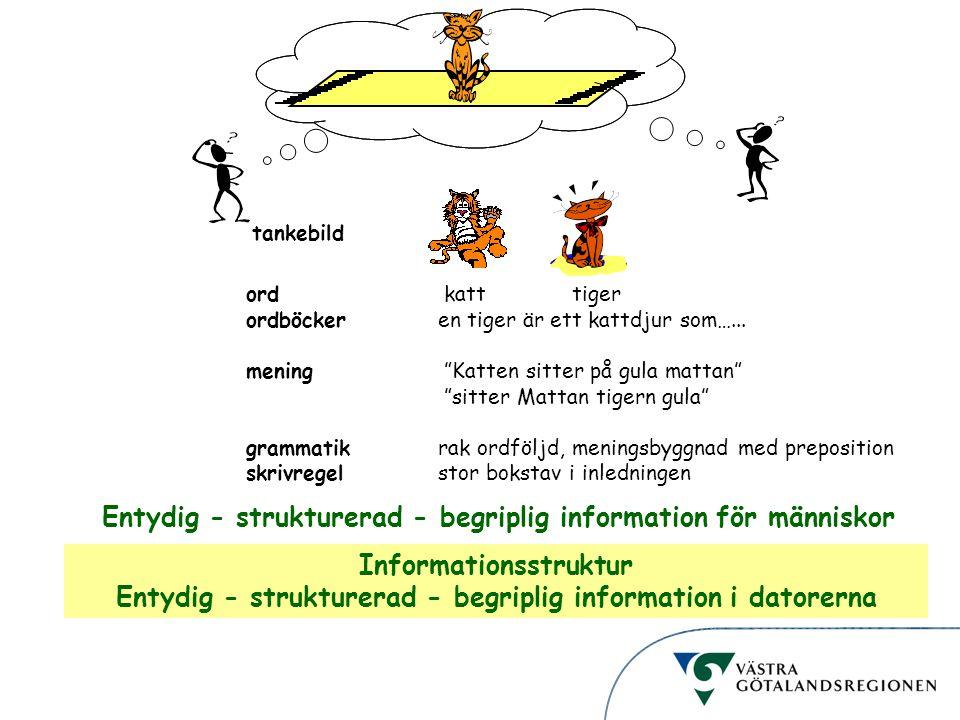 """Informationsstruktur ord katt tiger ordböckeren tiger är ett kattdjur som…... mening """"Katten sitter på gula mattan"""" """"sitter Mattan tigern gula"""" gramma"""