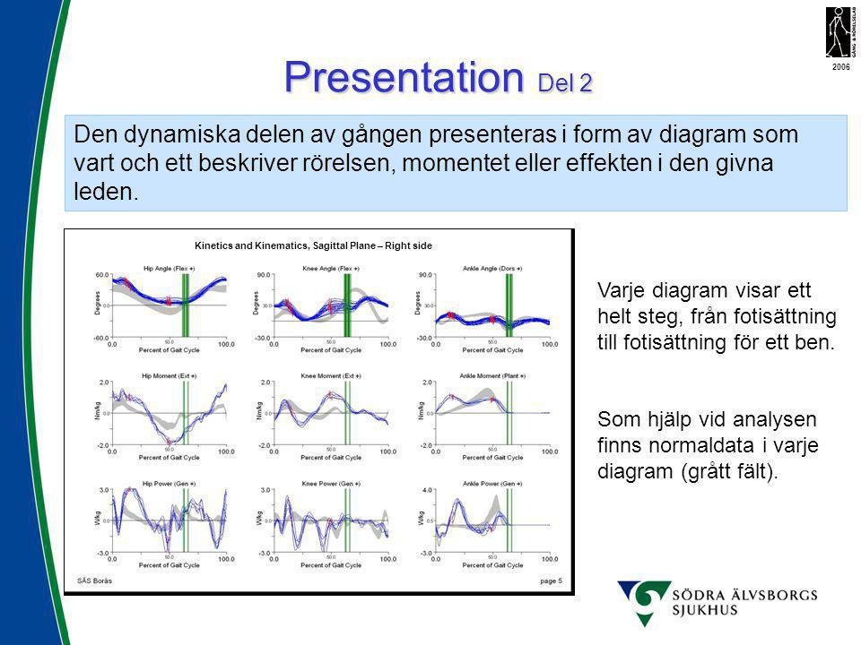 Den dynamiska delen av gången presenteras i form av diagram som vart och ett beskriver rörelsen, momentet eller effekten i den givna leden. Presentati