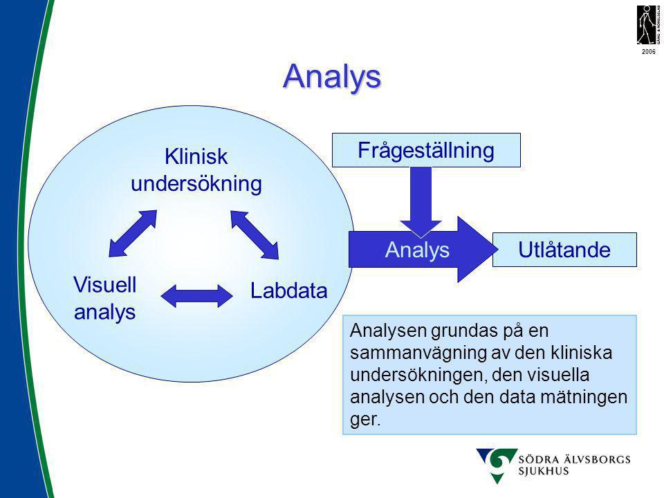 Analys Klinisk undersökning Labdata Visuell analys Utlåtande Analysen grundas på en sammanvägning av den kliniska undersökningen, den visuella analyse